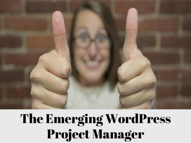 Emerging Project Manager- WordPress (3)